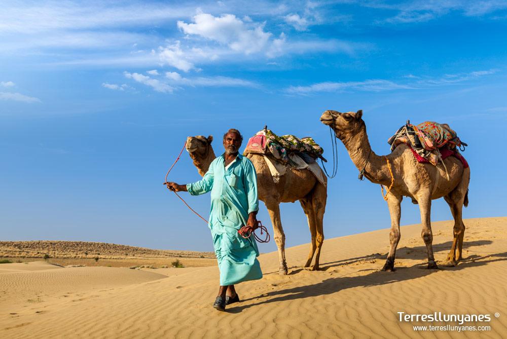 Viajes India Norte, Rajasthan. Desierto del Thar