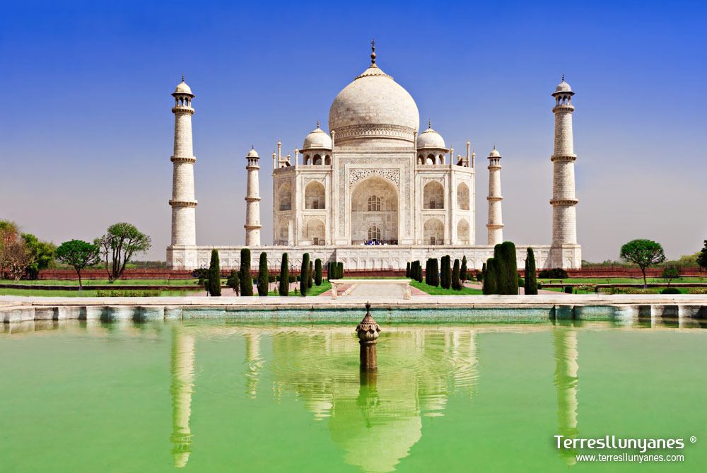 Viajes India Norte. Taj Mahal