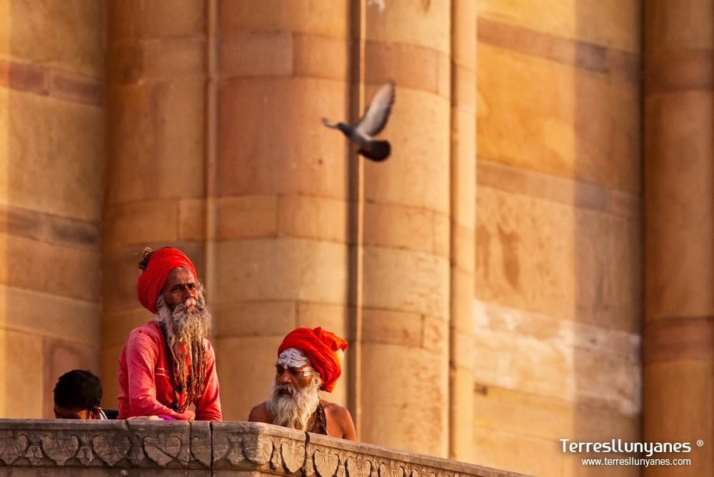 Viajes India Norte. Varanasi Sadhus